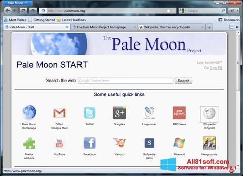 Screenshot Pale Moon Windows 8.1