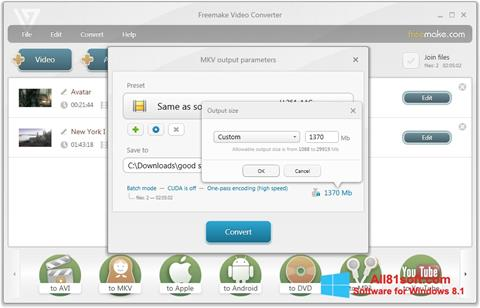 Screenshot Freemake Video Converter Windows 8.1