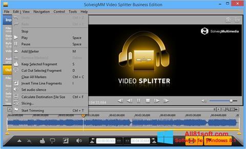 Screenshot SolveigMM Video Splitter Windows 8.1