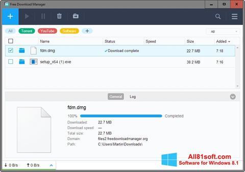 Screenshot Free Download Manager Windows 8.1