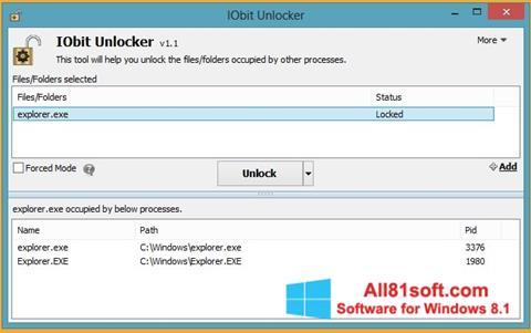 Screenshot IObit Unlocker Windows 8.1