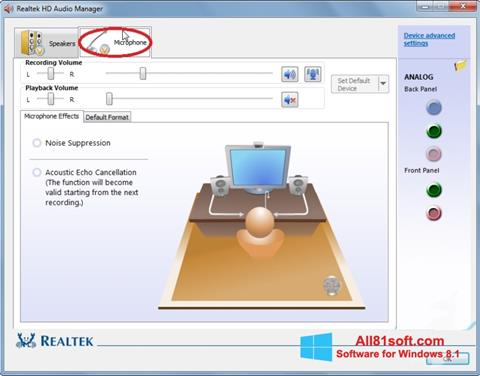 Screenshot Realtek Audio Driver Windows 8.1