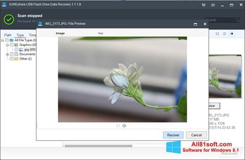Screenshot USB Flash Drive Recovery Windows 8.1