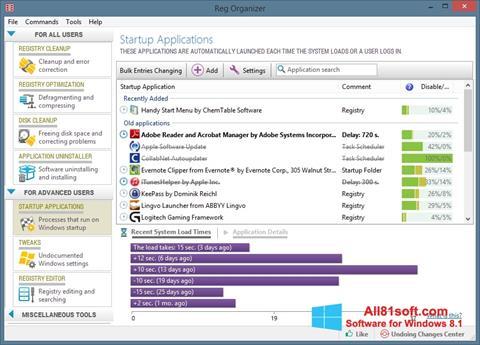 Screenshot Reg Organizer Windows 8.1